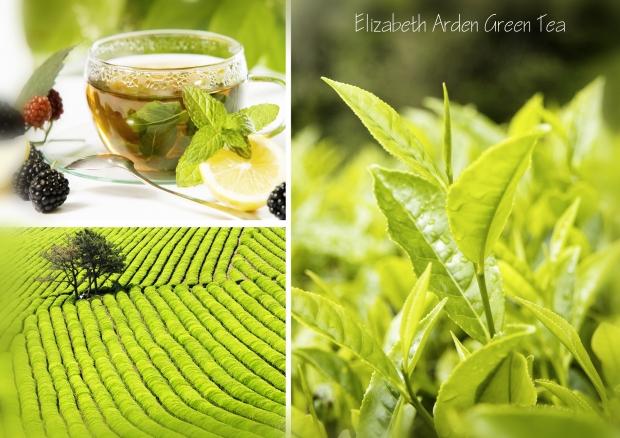 Прохлада, чистота и энергия чайной долины. В этом свежем и нежном, прозрачном аромате все нотки настолько гармонично переплетаются, что создается иллюзия погружения в прохладную воду.
