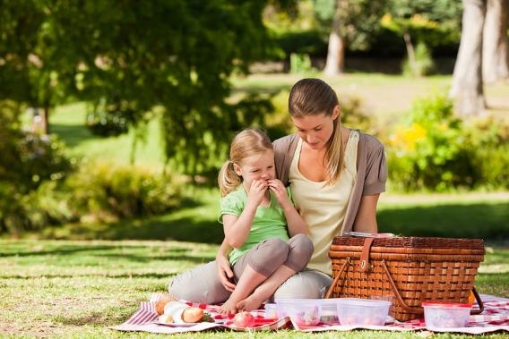 Супруги любят смотреть онлайн видео семьями на пикнике