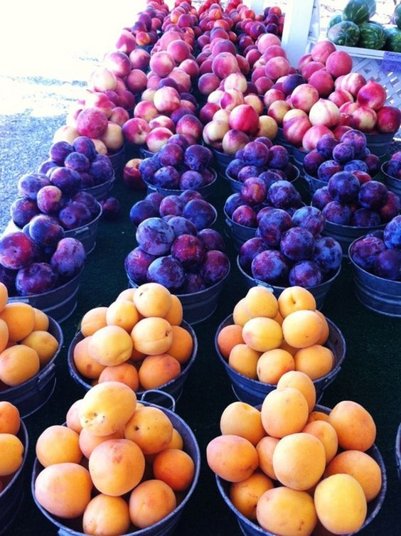 Замороженные сливы и абрикосы – немного лета в феврале