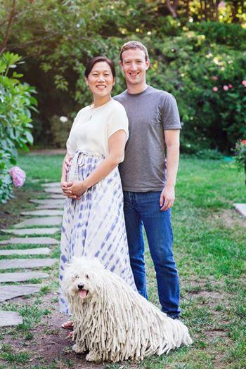 Мальчик или девочка: кто родится у основателя Facebook Марка Цукерберга - фото №1