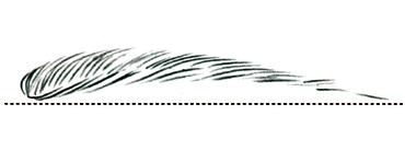 Брови: как найти идеальную форму - фото №1