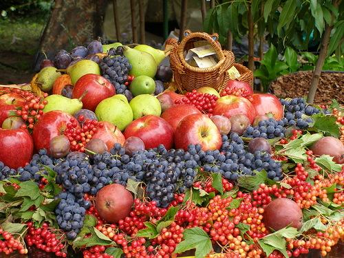 19 августа - Второй Яблочный Спас - фото №1