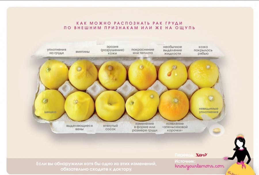 Как научиться исследовать грудь и уметь вовремя распознавать рак: подсказка на примере лимонов - фото №1