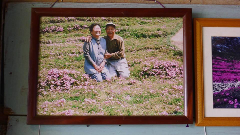 У любви есть запах цветов: мужчина придумал, как вернуть слепой жене смысл жизни - фото №1
