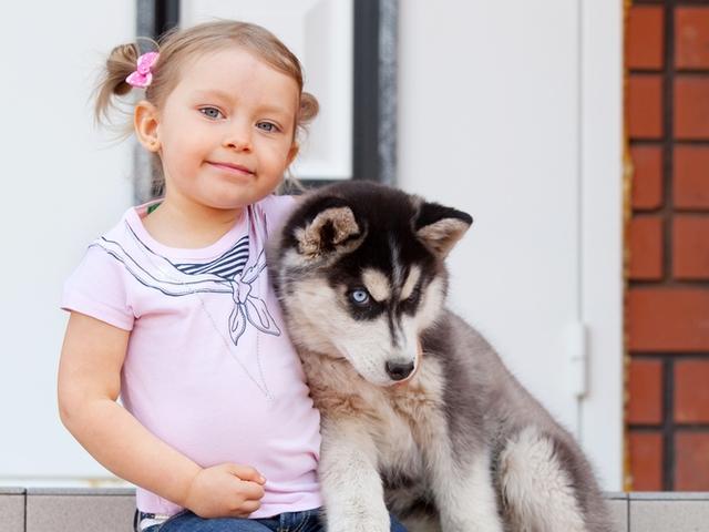 Животные и дети в доме: плюсы и минусы - фото №1