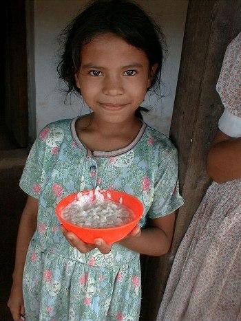 Как выглядит школьный обед в разных странах мира? - фото №18