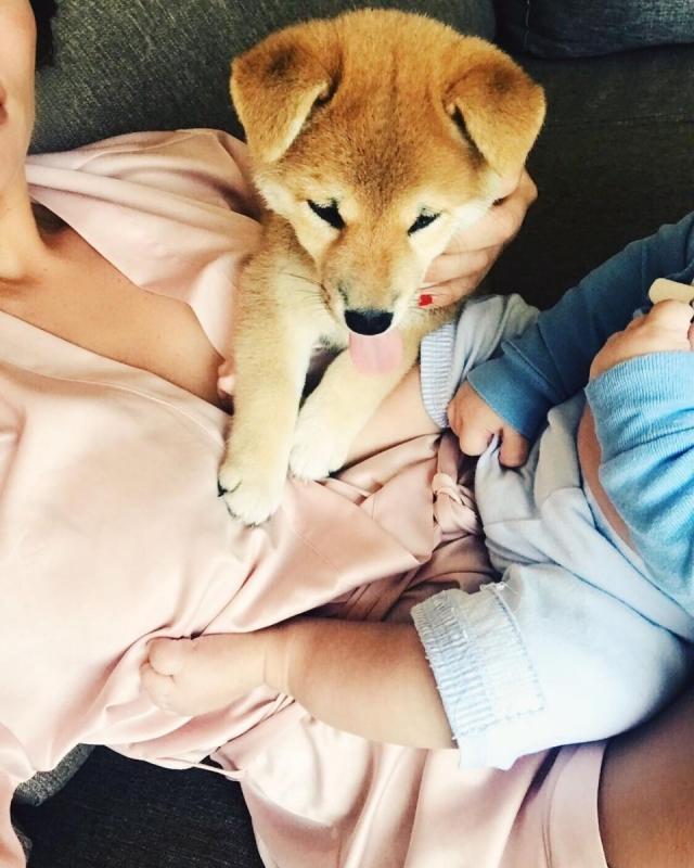 Анна Седокова поделилась трогательным ФОТО с сыном Гектором - фото №1