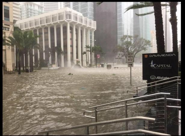 ураган ирма затопил майами фото