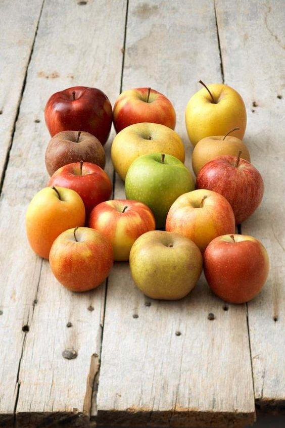 Все, что мы должны знать про яблоки и яблочные косточки: почему можно есть косточки от яблок - фото №2
