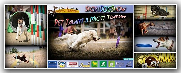Куда пойти 7-8 ноября шоу талантливых собак