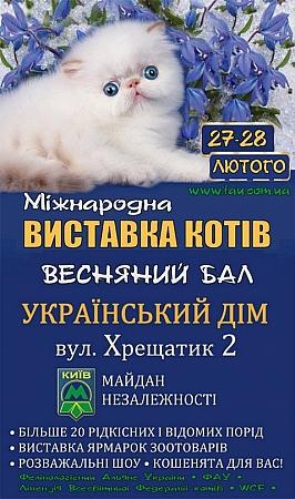 Куда пойти в Киеве на выходных 27-28 февраля выставка кошек