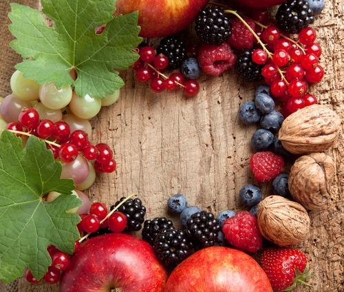 Последние ягоды осени: сбор и заготовка - фото №1