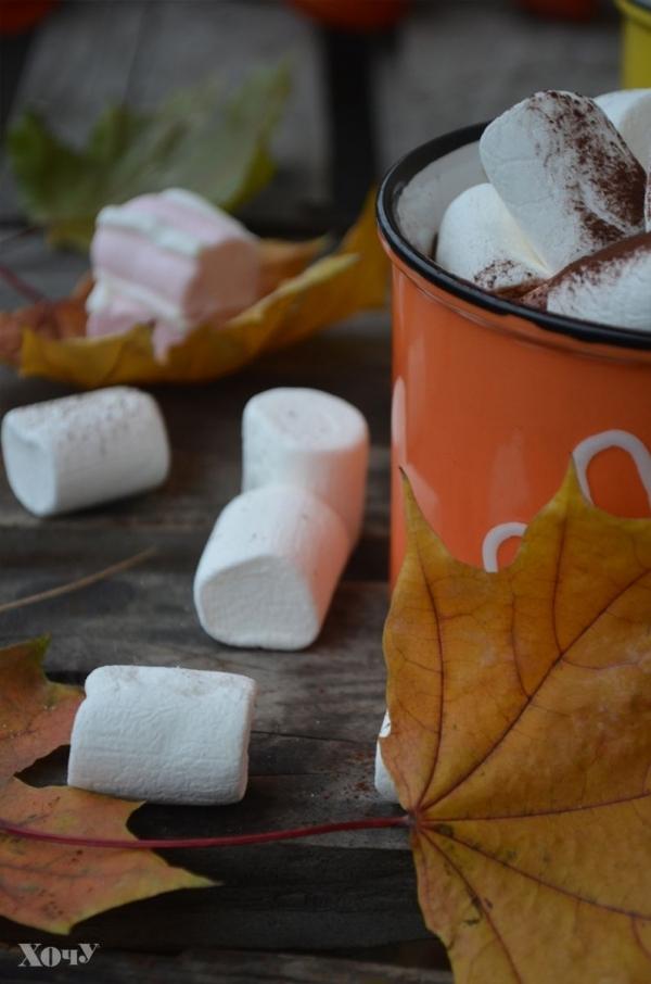 Кулинарная колонка Оли Мончук. Какао с маршмеллоу - фото №5