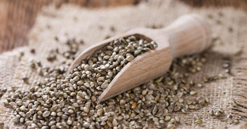 Семена чиа, конопли, подсолнечника – зачем они нужны и как их использовать? - фото №17