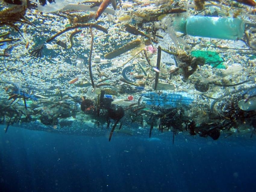 Великое мусорное пятно Тихого океана (Great Pacific Ocean Garbage Patch)
