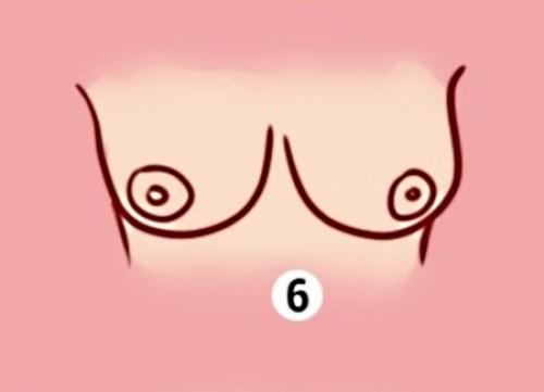 форма груди и характер