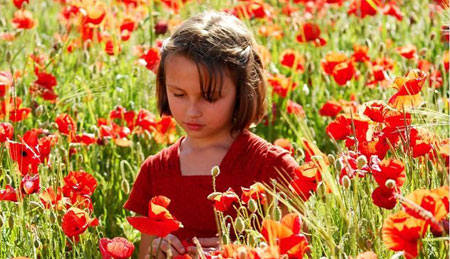 В Украину пришла «Французская весна» - фото №6