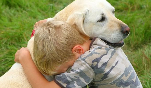 Как помочь ребенку пережить утрату: рекомендации психолога - фото №3