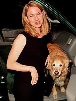 Модные собаки звезд. Фото - фото №8