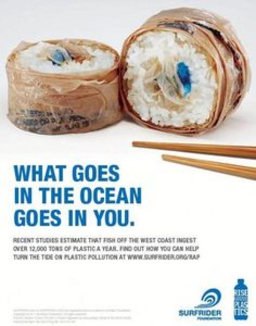 загрязнение океана