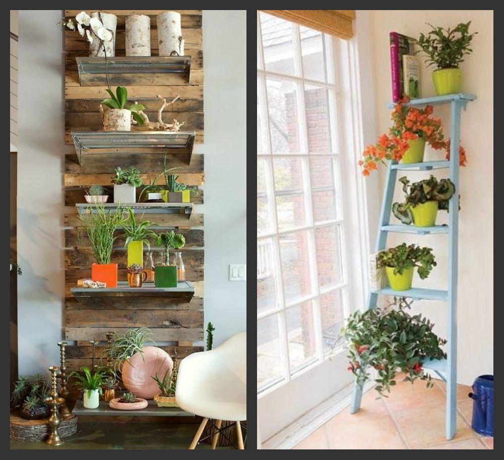 8 способов освежить интерьер с помощью растений - фото №5
