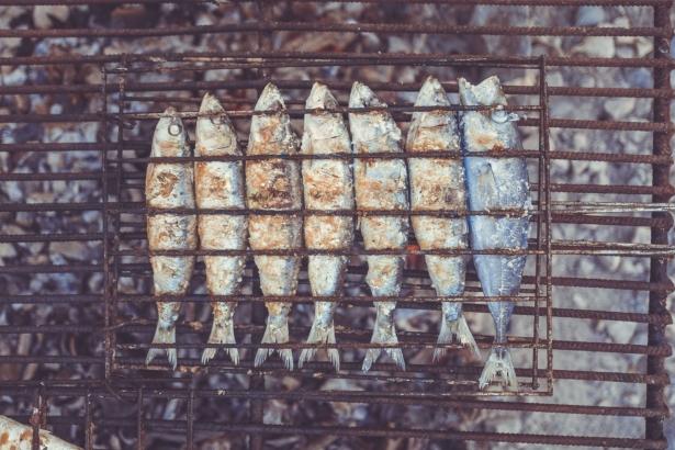 Как выбрать «железо» для пикника: мангал, шампуры и решетки для шашлыков - фото №5