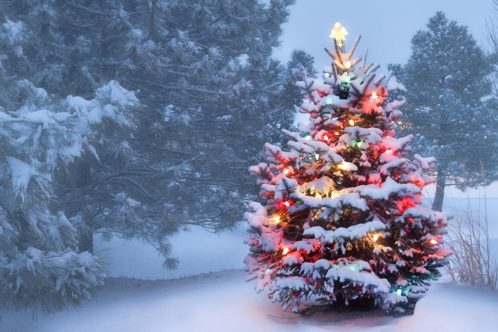 афиша на Рождество 2016