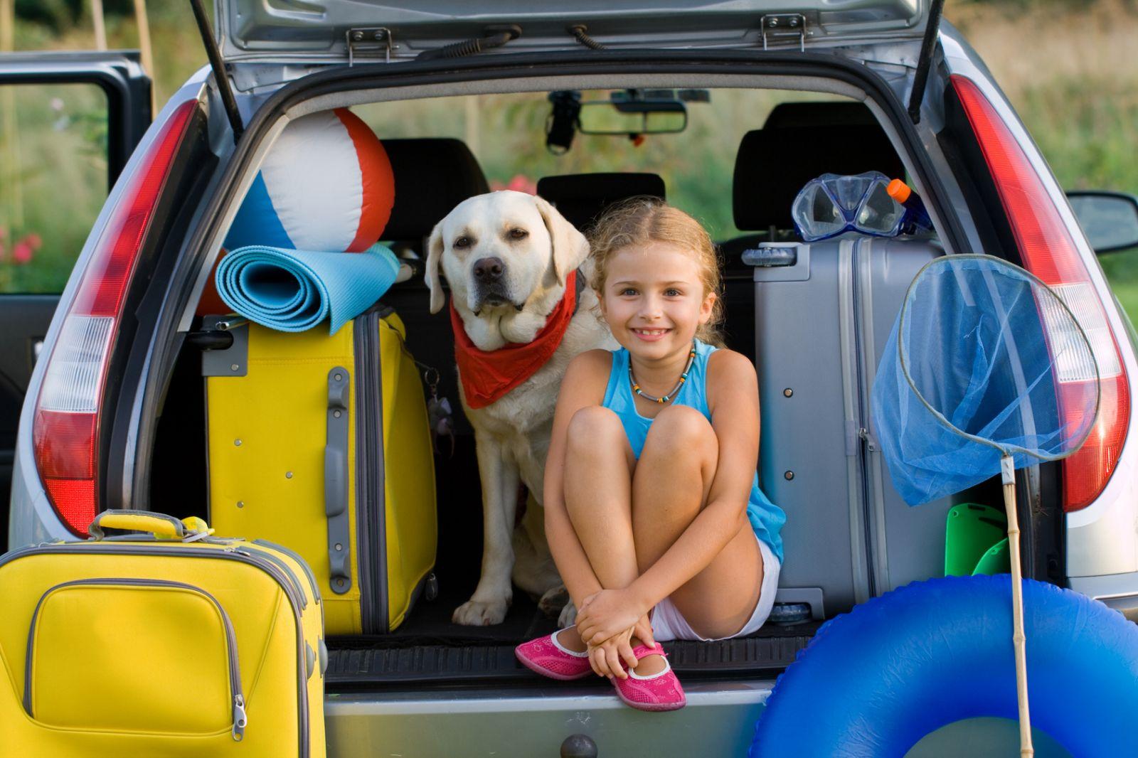 Все, что ты должна знать о путешествии с домашним питомцем - фото №2
