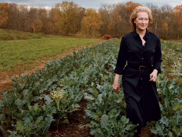 Когда стареть не страшно: лучшие образы Мэрил Стрип
