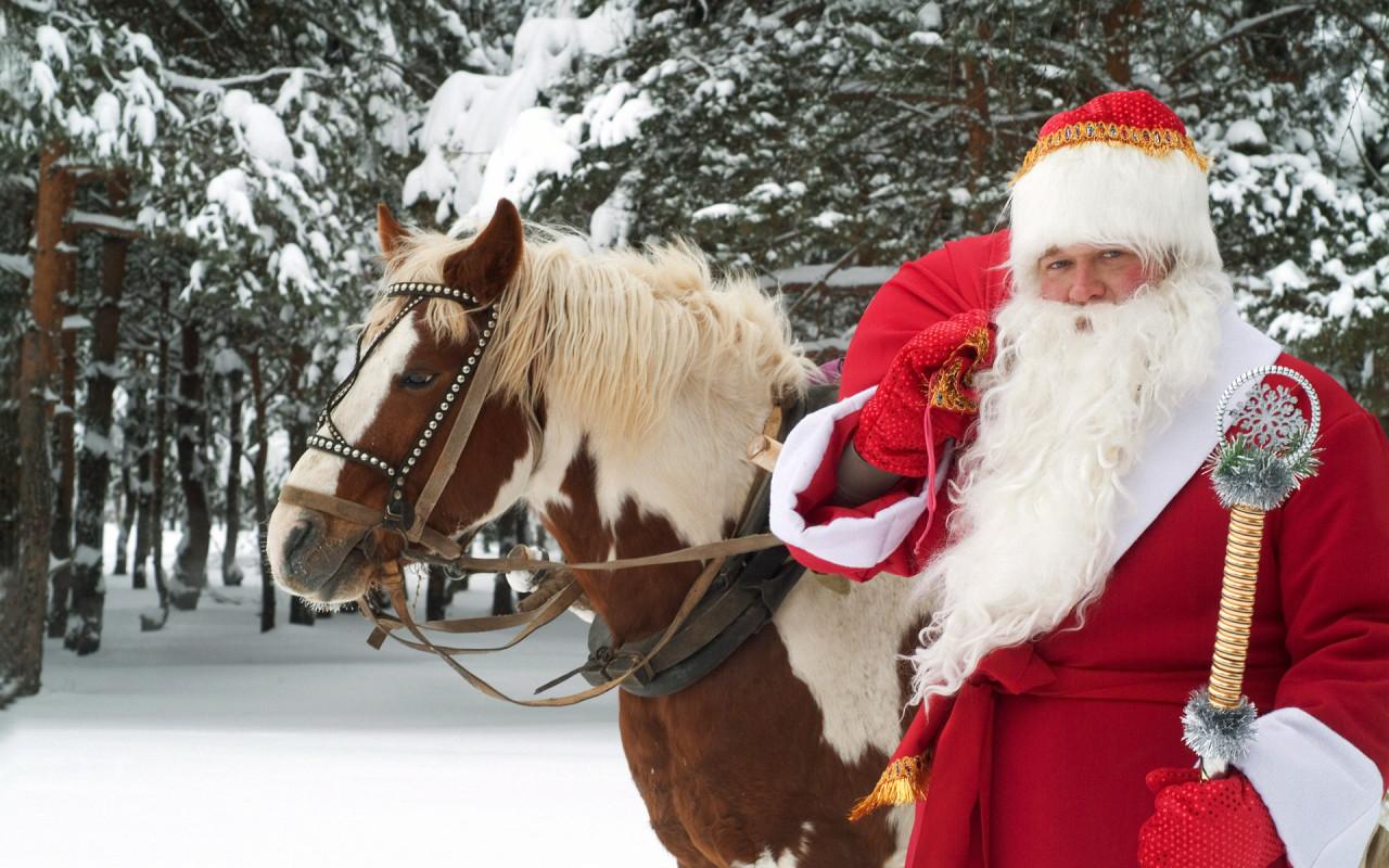 Откуда взялись Дед Мороз и Снегурочка - фото №1