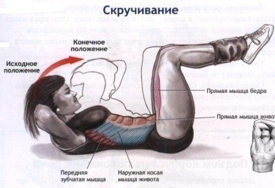 Какие упражнения сгонят внутренний жир - фото №1