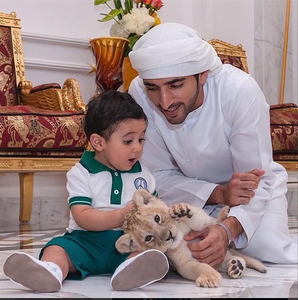 На кого подписаться в Instagram: настоящий наследный принц Дубая - фото №4