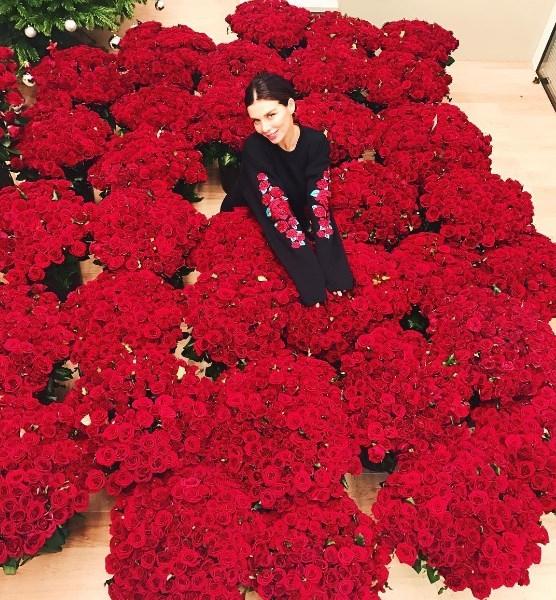 10 000 роз для секс-бомбы: Анна Седокова похвасталась роскошным подарком любимого - фото №1