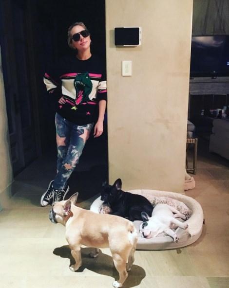 Леди Гага впечатлила синхронным сальто с мамой (ВИДЕО) - фото №1