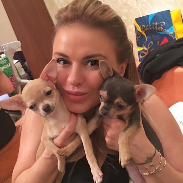 Анна Семенович опубликовала селфи без макияжа: хейтеры раскритиковали ФОТО - фото №1