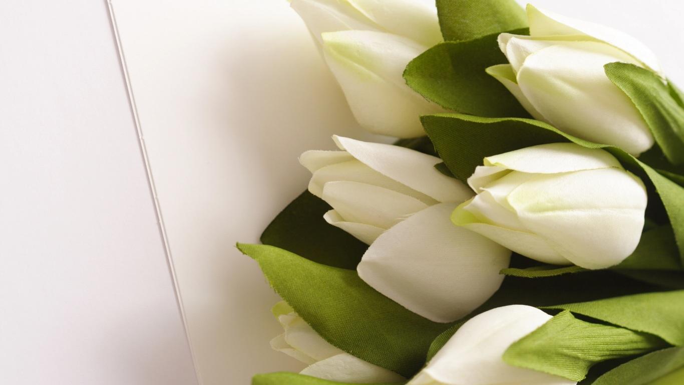 Поздравления с 8 марта для любимых девушек: самые красивые стихи - фото №3