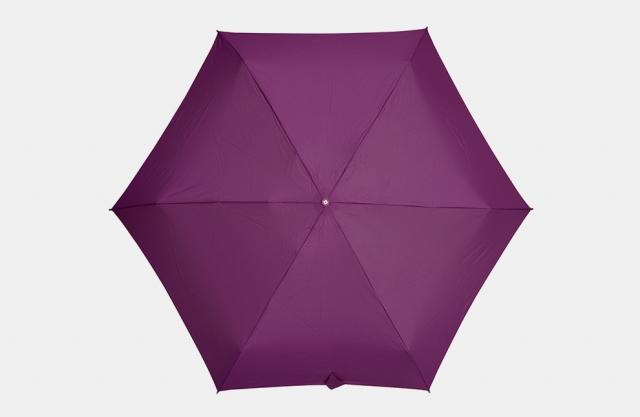 Модные зонты на осень 2016 зонты Samsonite Minipli