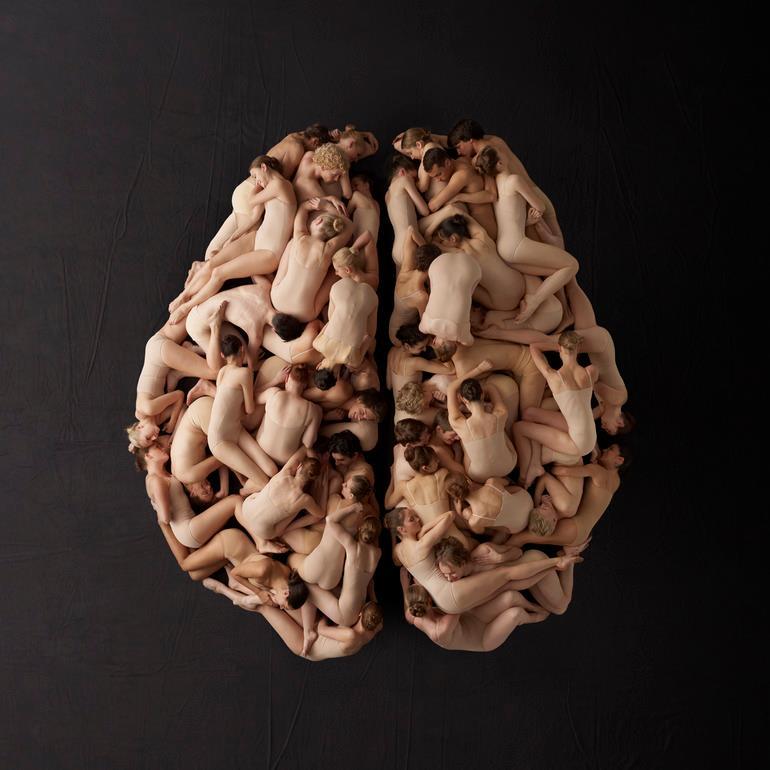 Георгины, мозг мужчины прикольные картинки