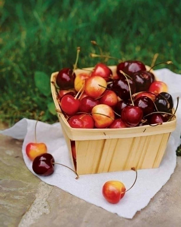 Все о черешне: польза и вред для здоровья, а также калорийность ягоды - фото №2