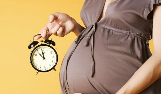 Декретный отпуск и выплаты: на что рассчитывать молодой маме - фото №1