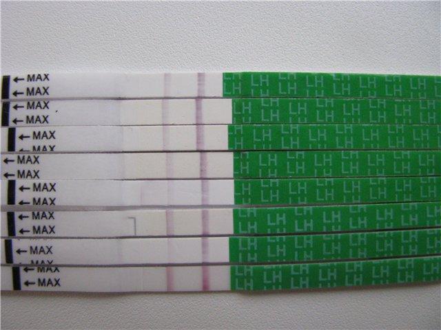 Тест на овуляцию: как выбрать и пользоваться - фото №2