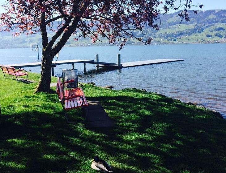 Выходные на майские праздники 2015: чем заняться - фото №2