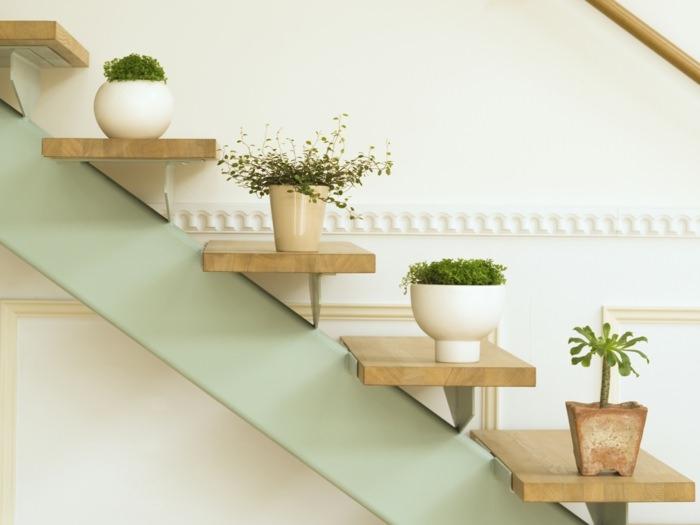 Домашняя оранжерея: выбираем красивые и полезные комнатные растения (очищающие, бактерицидные, увлажняющие) - фото №10