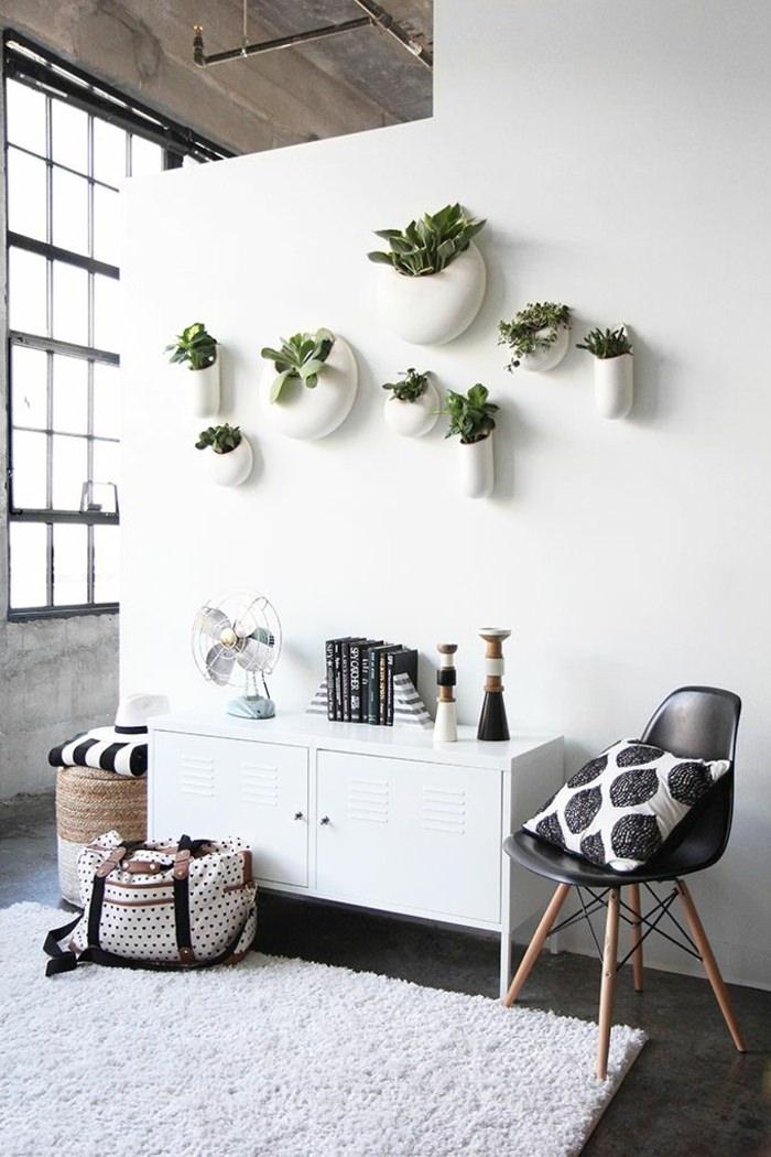 Домашняя оранжерея: выбираем красивые и полезные комнатные растения (очищающие, бактерицидные, увлажняющие) - фото №5