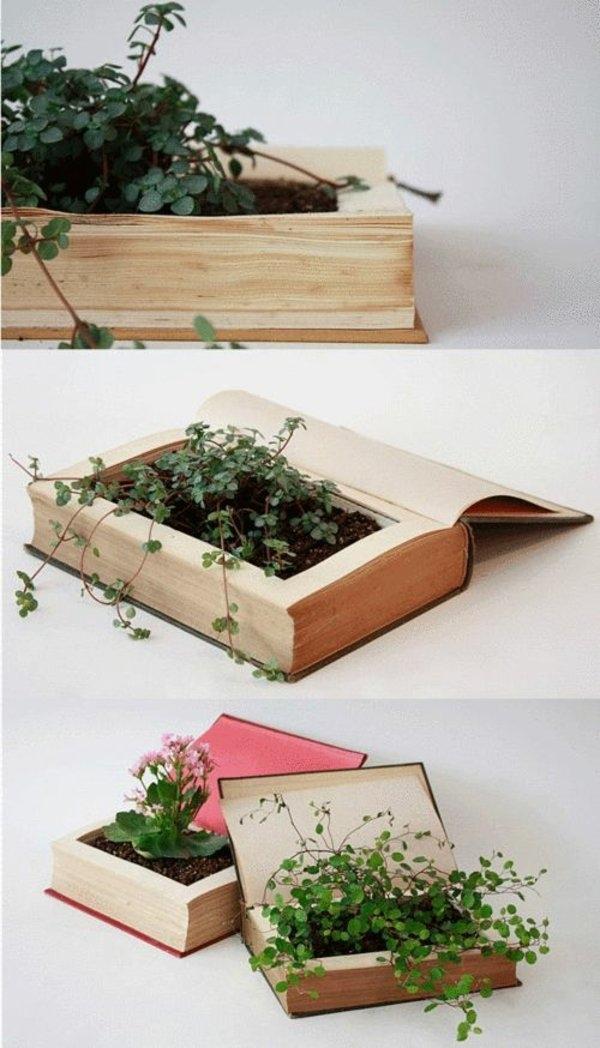 Домашняя оранжерея: выбираем красивые и полезные комнатные растения (очищающие, бактерицидные, увлажняющие) - фото №8