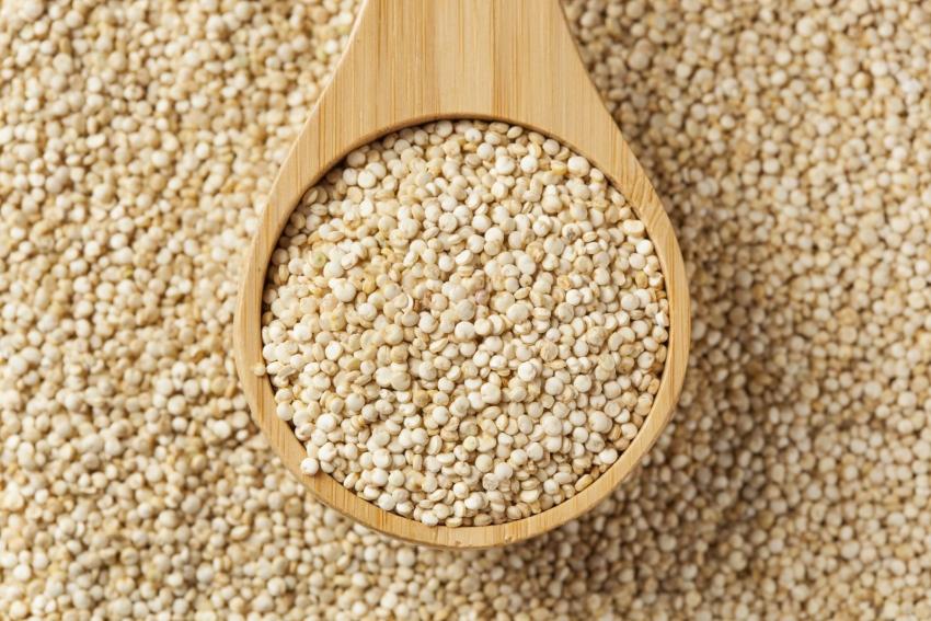Семена чиа, конопли, подсолнечника – зачем они нужны и как их использовать? - фото №23