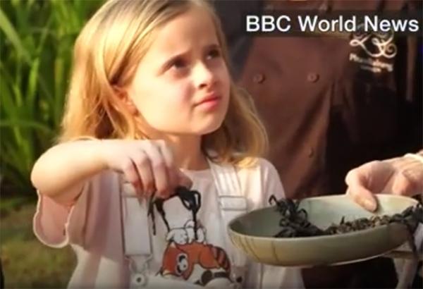 Анджелина Джоли скормила детям пауков и скорпионов (ВИДЕО) - фото №1