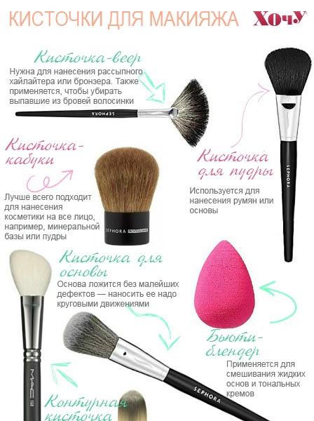 Какие кисти для макияжа нужны каждой девушке. Инфографика - фото №1