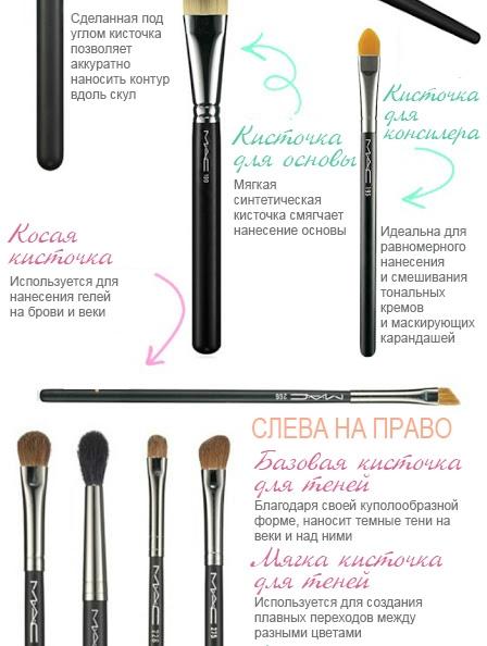 Какие кисти для макияжа нужны каждой девушке. Инфографика - фото №2