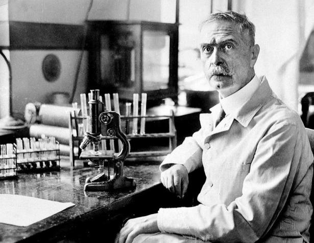 Почему иммунолог Карл Ландштейнер спас всем нам жизнь: Google выпустил памятный дудл - фото №2